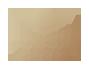 Logo Concha Ortiz