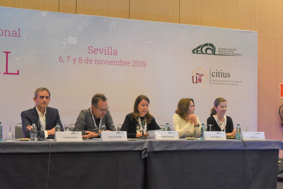 Secal Sevilla 2019 1